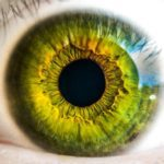 Fighting Dementia Using Your Eyes and Ears